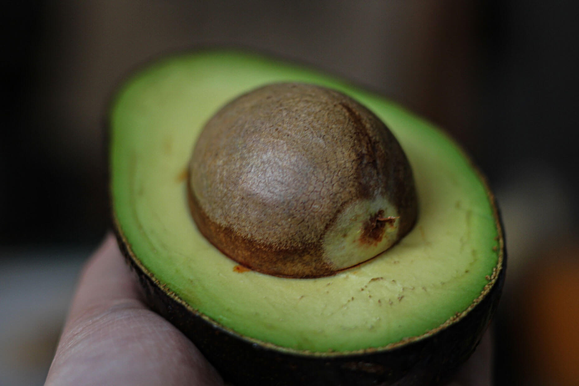 A partially obscured hand holding half an avocado with the pit still in place